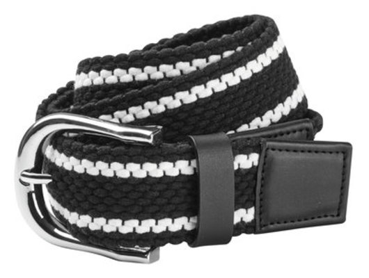 Dublin Stripe Web Belt