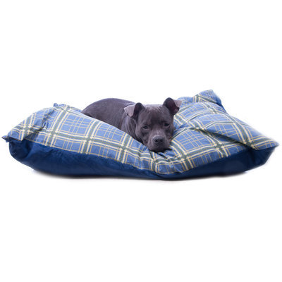 Economy Dog Bed, Assorted Colors