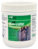 Elevate Maintenance Powder