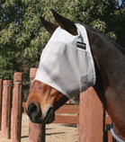 Equisential Fly Mask without Ears