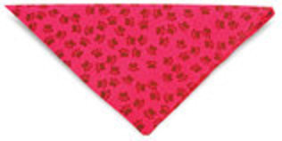 Fun Pattern Design Bandanas