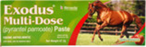 Exodus Multi-Dose Paste, 2-dose tube