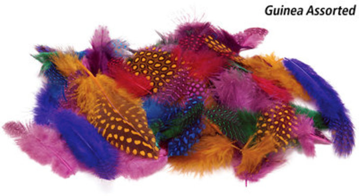 Guinea Feathers in Fashion, Assorted