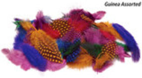 Feathers in Fashion! Grooming Accessories