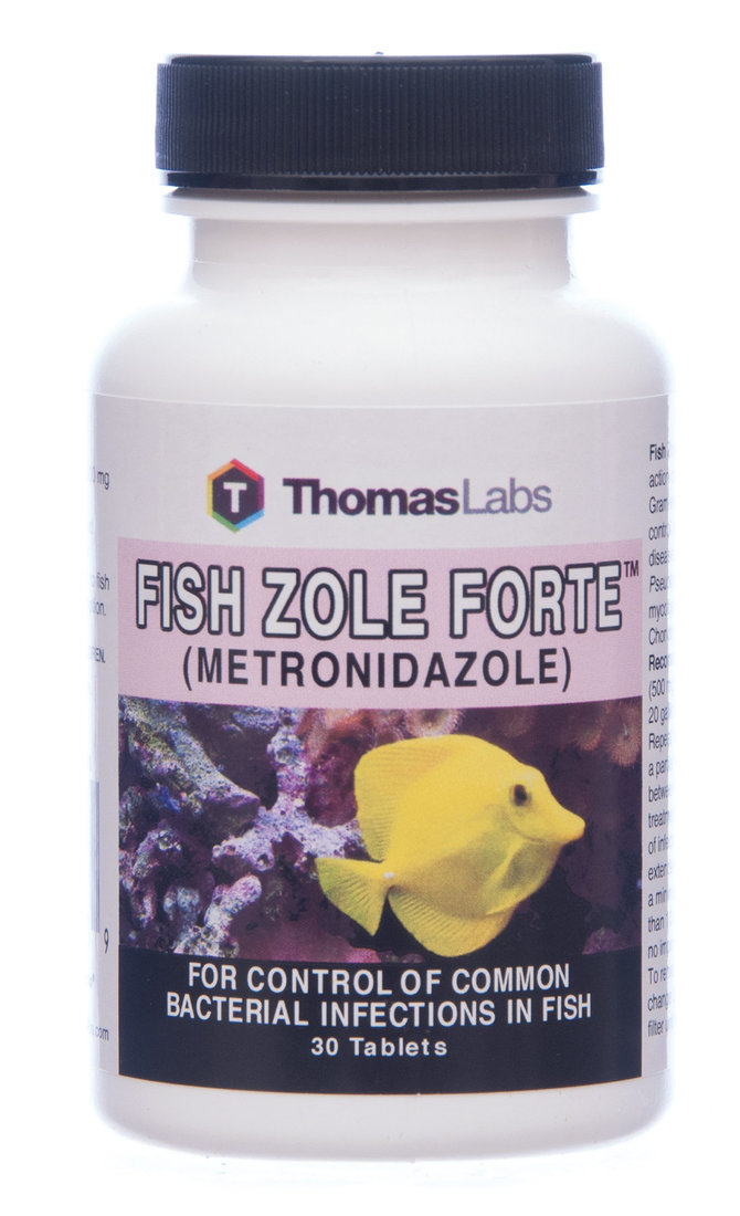 Fish zole forte all about fish for Fish flox forte