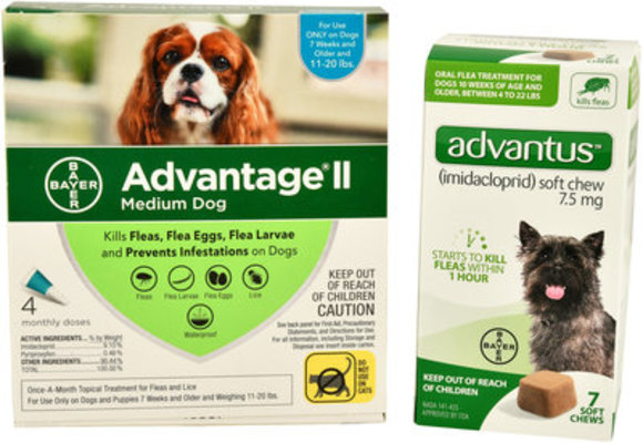 Flea Week - Bayer Bundle for Dogs 11-20 lb