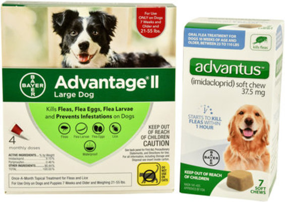 Flea Week - Bayer Bundle for Dogs 21-55 lb