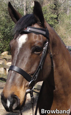 Fly Armor Browband (2 inserts)