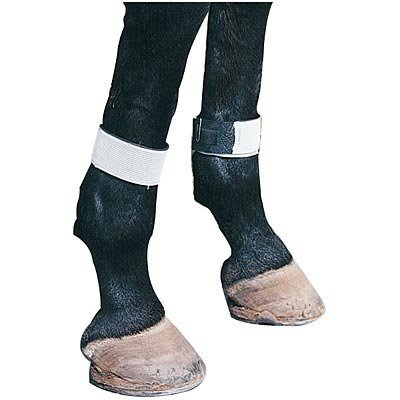 Defy the Fly Leg Bands (set of 4)