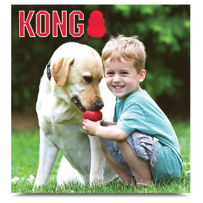 Free KONG&#174 Booklet