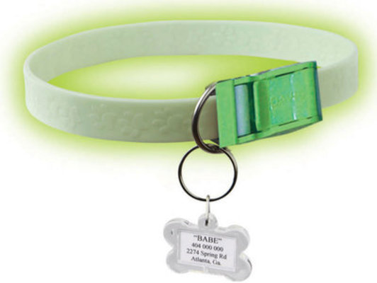 FurEver Brite Safety Collar