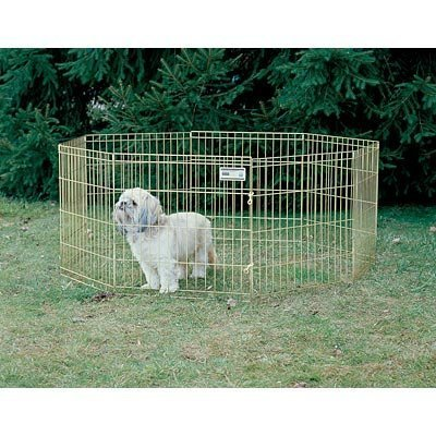 MidWest Gold Exercise Dog Play Pen