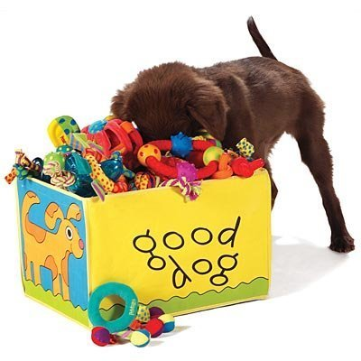 Good Dog Toy Box