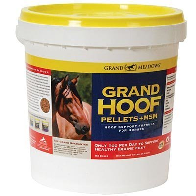 Grand Hoof™ Pellets + MSM