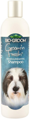 Groom n' Fresh Scented Shampoo, 12  oz