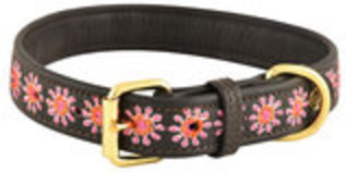 HALO Ava Embroidered Leather Dog Collar