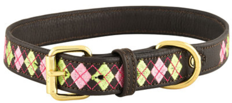 HALO Buffy Embroidered Leather Dog Collar