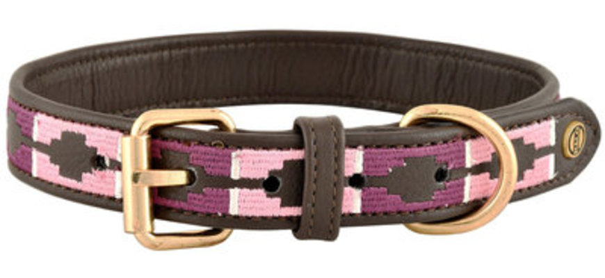 HALO CAL Embroidered Leather Dog Collar