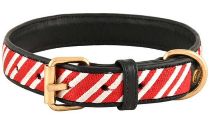 HALO Diagonal Stripes Embroidered Leather Dog Collar