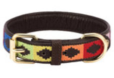 HALO Rainbow Embroidered Leather Dog Collar
