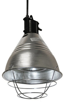 Halogen Infrared Heat Lamp and Bulbs (Sold Separately)