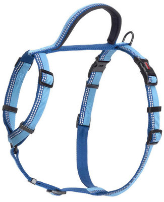Large, Halti Walking Harness, Blue
