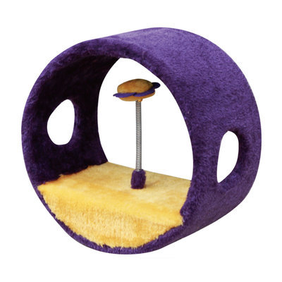 Hoop Shaped Cat Toy with Teasers