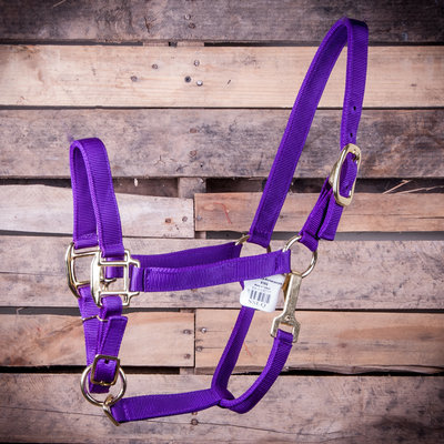 Adjustable Horse Halter with Throat Snap, (600-900 lb)