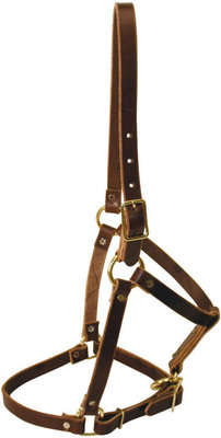 Riveted Leather Halter, horse