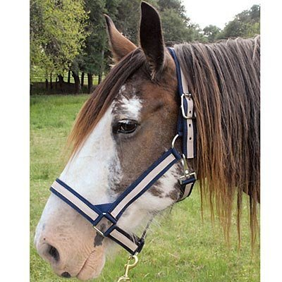 Nylon Striped Draft Halter