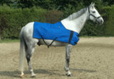 HyperKewl Horse Cooling Blanket, Large/XL