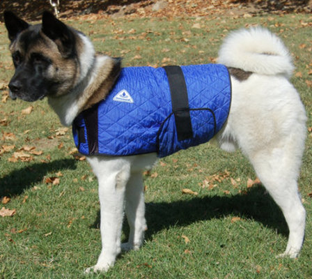 Medium, HyperKewl Dog Cooling Vest
