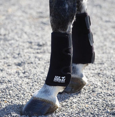 Ice Horse Tendon Wraps