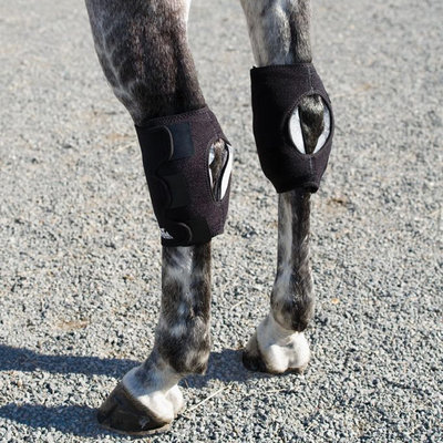 Ice Horse® Hock Wrap (& Accessories)