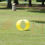 Dog Agility Starter Equipment, 9 pieces