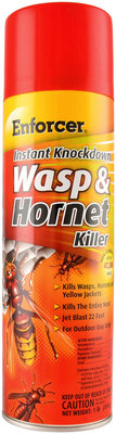 Instant Knockdown Wasp & Hornet Killer, 16 oz
