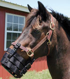 Jeffers® Anti-Grazing Muzzle