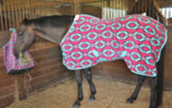 "Jeffers Expression ""Aztec"" Fleece Horse Cooler"