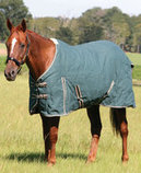 Jeffers Basic Canvas Horse Blanket