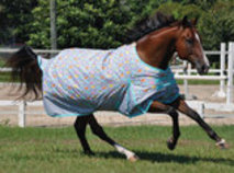 "Jeffers 600D ""Blankies"" Expression Horse Blanket, 240g"