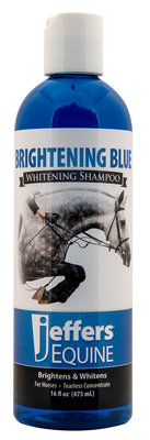 Jeffers Brightening Blue Shampoo