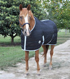 Jeffers Closed Front Horse Stable Blanket