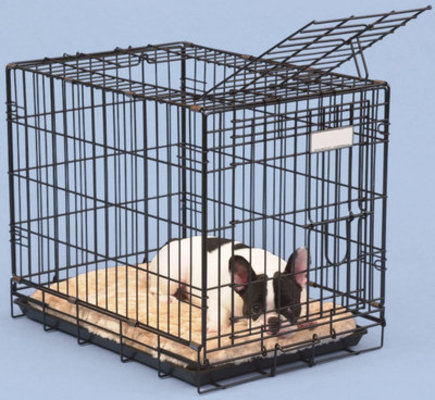 Jeffers Double Door Fold & Go Crates