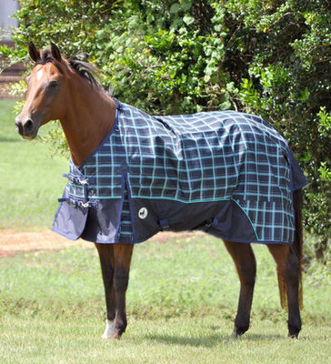 Jeffers 600D Economy Horse Turnout Blanket, 240g