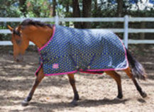 Jeffers 600D Tempest Polka Dot Horse Blanket 240g, Lime Green