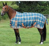 Jeffers Exclusive Saxon Heavy Weight Turnout Blanket & Stable Blanket Set