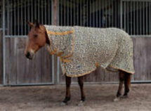 """Jeffers Expression """"Electric Cheetah"""" Combo Neck Fly Sheet"""