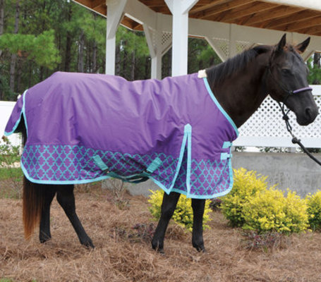 Jeffers Expression Medium Weight Turnout Blanket, Moroccan