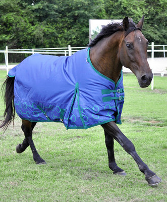 "Jeffers Expression ""Uniquely English"" 600D Horse Blanket, 240g"