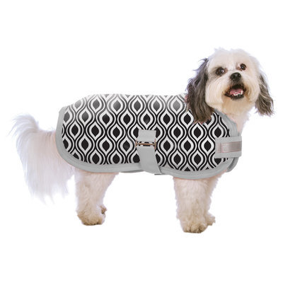 "Jeffers ""Metallic Trellis"" Expression Dog Rug"